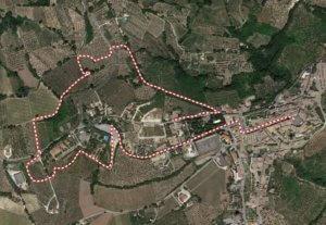 Camminata fra gli Olivi a Montefalco percorso