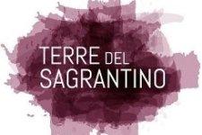 Terre del Sagrantino 2019